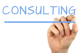 Consulting/Begeleiding